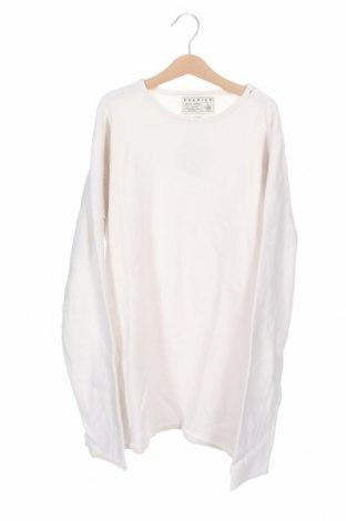 Pánský svetr  Premium By Jack & Jones, Velikost S, Barva Béžová, Bavlna, Cena  369,00Kč