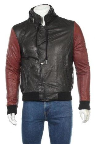 Ανδρικό δερμάτινο μπουφάν Hamaki-Ho, Μέγεθος L, Χρώμα Μαύρο, Γνήσιο δέρμα, Τιμή 100,02€