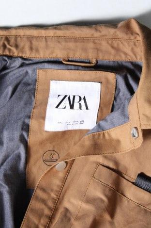 Мъжко яке Zara, Размер L, Цвят Кафяв, 69% памук, 31% полиестер, Цена 63,00лв.