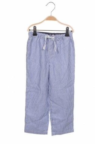 Пижама ZY kids, Размер 2-3y/ 98-104 см, Цвят Син, Памук, Цена 20,16лв.