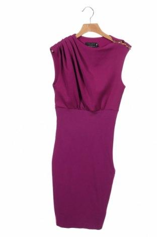 Φόρεμα Ted Baker, Μέγεθος XS, Χρώμα Ρόζ , 81% πολυεστέρας, 10% βισκόζη, 9% ελαστάνη, Τιμή 73,76€