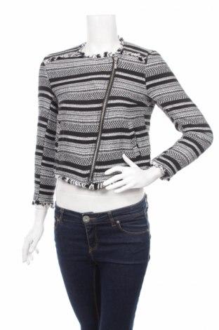 Дамско яке H&M Divided, Размер M, Цвят Сив, 92% памук, 8% полиестер, Цена 15,20лв.