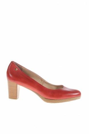 Dámske topánky  Pikolinos