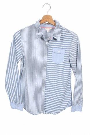 Παιδικό πουκάμισο Cat & Jack, Μέγεθος 13-14y/ 164-168 εκ., Χρώμα Μπλέ, Βαμβάκι, Τιμή 11,72€