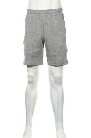 Ανδρικό κοντό παντελόνι PUMA, Μέγεθος M, Χρώμα Γκρί, 78% βαμβάκι, 18% πολυεστέρας, 4% ελαστάνη, Τιμή 26,68€