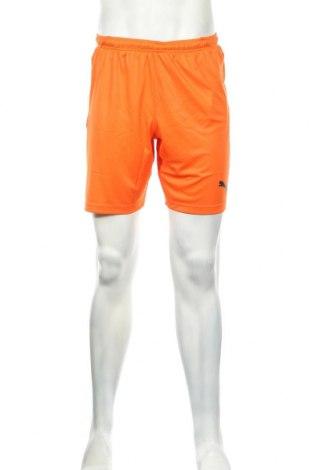 Ανδρικό κοντό παντελόνι PUMA, Μέγεθος S, Χρώμα Πορτοκαλί, Πολυεστέρας, Τιμή 26,68€
