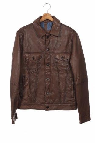 Ανδρικό δερμάτινο μπουφάν Massimo Dutti, Μέγεθος L, Χρώμα Καφέ, Γνήσιο δέρμα, Τιμή 80,08€