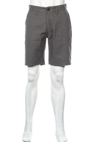 Мъжки къс панталон Brixton, Размер M, Цвят Сив, 59% памук, 39% полиестер, 2% еластан, Цена 30,16лв.