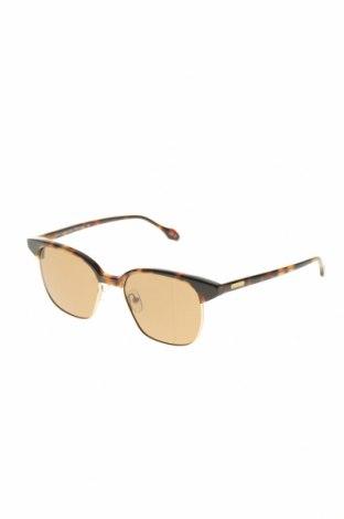 Sluneční brýle   GF Ferre', Barva Hnědá, Cena  1561,00Kč
