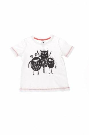 Dziecięcy T-shirt Palomino