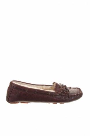 Dámske topánky  Frye