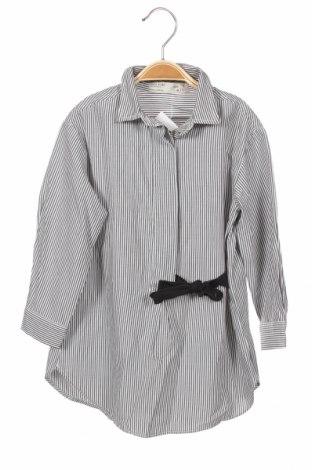 Детска риза Zara Kids, Размер 4-5y/ 110-116 см, Цвят Сив, 63% полиестер, 37% памук, Цена 8,40лв.
