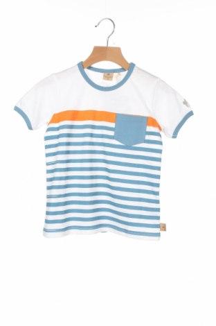 Детска тениска Belly Button, Размер 2-3y/ 98-104 см, Цвят Многоцветен, Памук, Цена 6,40лв.