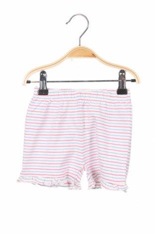 Детски къс панталон Steiff, Размер 9-12m/ 74-80 см, Цвят Многоцветен, 95% памук, 5% еластан, Цена 6,80лв.