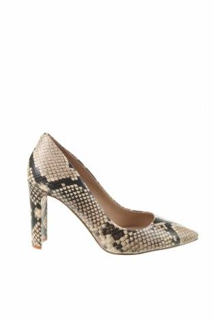 Γυναικεία παπούτσια Aldo, Μέγεθος 37, Χρώμα Πολύχρωμο, Γνήσιο δέρμα, Τιμή 42,57€