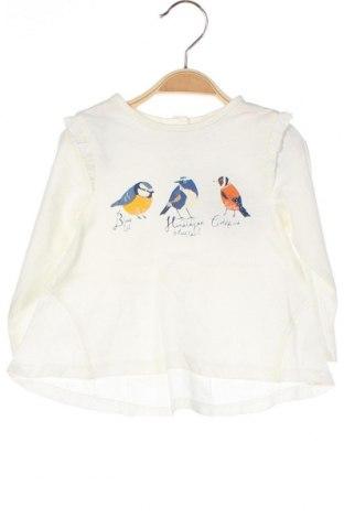 Детска блуза Orchestra, Размер 9-12m/ 74-80 см, Цвят Бял, 100% памук, Цена 12,48лв.