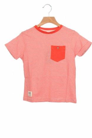 Παιδικό μπλουζάκι Tony Boy, Μέγεθος 6-7y/ 122-128 εκ., Χρώμα Πορτοκαλί, Βαμβάκι, Τιμή 8,04€