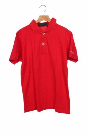 Tricou de bărbați Chervo, Mărime XXS, Culoare Roșu, Bumbac, Preț 66,28 Lei