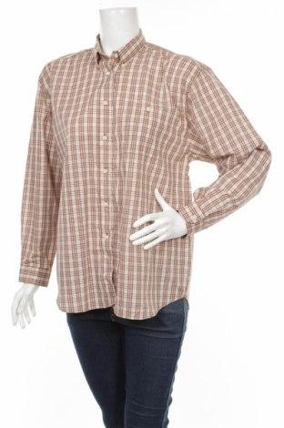 Дамска риза, Размер L, Цвят Бежов, 65% полиестер, 35% памук, Цена 34,20лв.