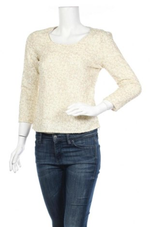 Γυναικεία μπλούζα Armand Ventilo, Μέγεθος S, Χρώμα Εκρού, 94% πολυαμίδη, 6% ελαστάνη, Τιμή 22,40€