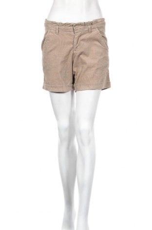 Γυναικείο κοντό παντελόνι Esprit, Μέγεθος XS, Χρώμα  Μπέζ, 98% βαμβάκι, 2% ελαστάνη, Τιμή 2,34€