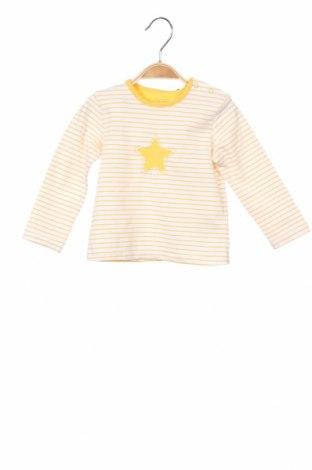 Детска блуза Belly Button, Размер 3-6m/ 62-68 см, Цвят Бял, 95% памук, 5% еластан, Цена 18,48лв.
