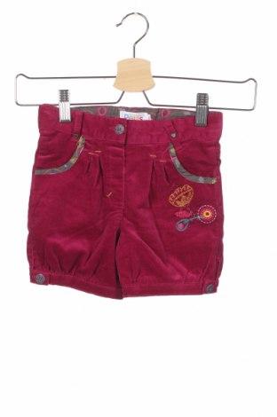 Παιδικό κοντό παντελόνι La Compagnie des Petits, Μέγεθος 2-3y/ 98-104 εκ., Χρώμα Ρόζ , 97% βαμβάκι, 3% ελαστάνη, Τιμή 7,64€