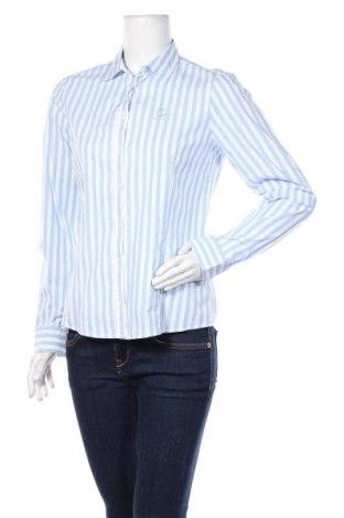 Damska koszula Bogner, Rozmiar S, Kolor Niebieski, 97% bawełna, 3% elastyna, Cena 235,20zł