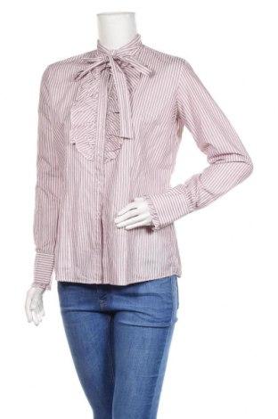 Damska koszula Gant, Rozmiar L, Kolor Różowy, Bawełna, Cena 108,00zł