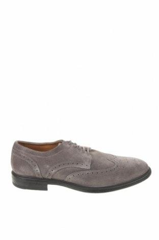 Ανδρικά παπούτσια Geox, Μέγεθος 46, Χρώμα Γκρί, Φυσικό σουέτ, Τιμή 79,02€