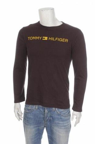 Męska bluzka Tommy Hilfiger