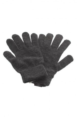 Rękawiczki Cedar Wood State