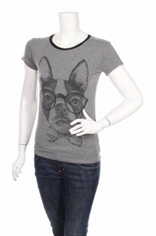 Damski T-shirt Coolcat