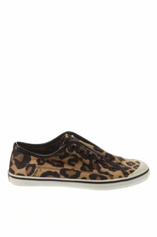 Γυναικεία παπούτσια Coach, Μέγεθος 37, Χρώμα Πολύχρωμο, Κλωστοϋφαντουργικά προϊόντα, Τιμή 72,99€