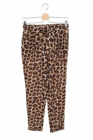 Damskie spodnie Zara, Rozmiar XS, Kolor Kolorowy, 97% poliester, 3% elastyna, Cena 76,80zł