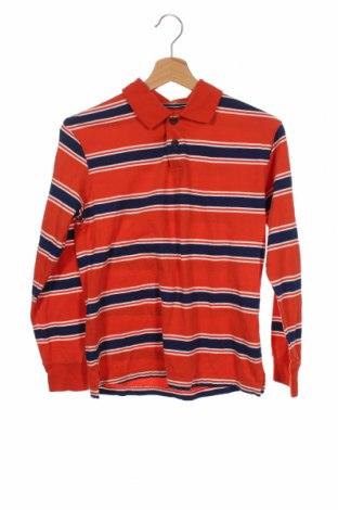 Детска блуза Place Est. 1989, Размер 10-11y/ 146-152 см, Цвят Многоцветен, Памук, Цена 19,95лв.