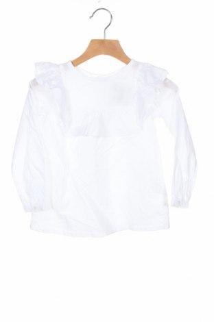 Dziecięca koszula Lola Palacios, Rozmiar 3-4y/ 104-110 cm, Kolor Biały, Bawełna, Cena 91,88zł