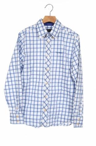 Dziecięca koszula Ted Baker, Rozmiar 12-13y/ 158-164 cm, Kolor Niebieski, Bawełna, Cena 108,00zł