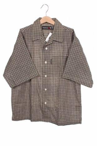Dziecięca koszula Trespass, Rozmiar 12-13y/ 158-164 cm, Kolor Kolorowy, Bawełna, Cena 84,00zł