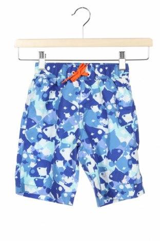 Dětské krátké kalhoty  Deux par Deux, Velikost 3-4y/ 104-110 cm, Barva Vícebarevné, Polyester, Cena  415,00Kč