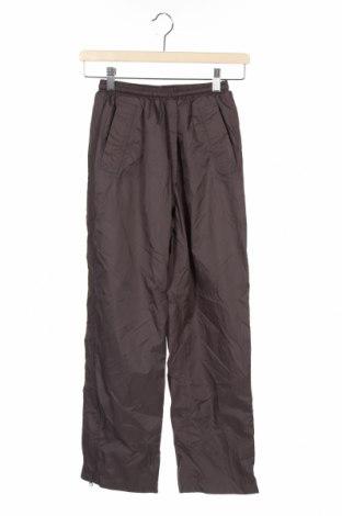 Детски спортен панталон Atrium, Размер 10-11y/ 146-152 см, Цвят Сив, Полиамид, Цена 27,30лв.