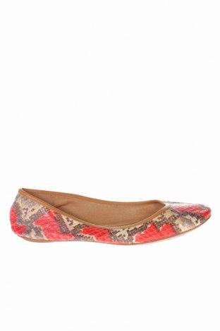 Дамски обувки Ash, Размер 37, Цвят Многоцветен, Естествена кожа, Цена 32,76лв.