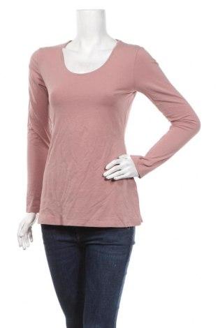 Dámská halenka Street One, Velikost M, Barva Růžová, 92% bavlna, 8% elastan, Cena  414,00Kč