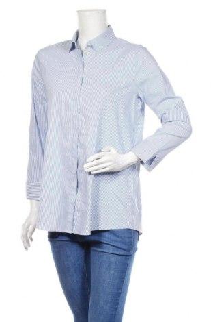 Дамска риза Cartoon, Размер M, Цвят Син, 69% памук, 28% полиестер, 3% еластан, Цена 18,90лв.