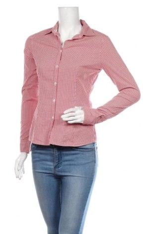 Dámská košile  Montego, Velikost S, Barva Červená, 96% bavlna, 4% elastan, Cena  414,00Kč