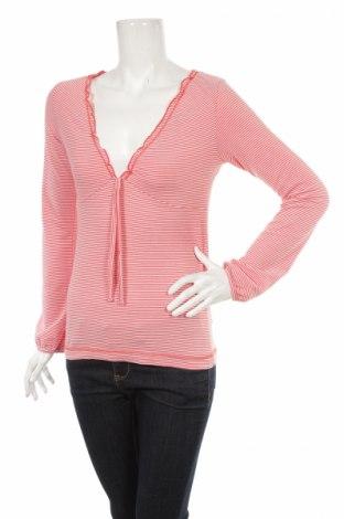 Γυναικεία μπλούζα Rainbow, Μέγεθος XS, Χρώμα Πορτοκαλί, Τιμή 6,19€
