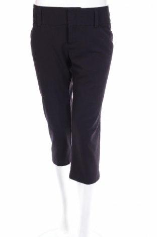 Γυναικείο παντελόνι Ellen Tracy, Μέγεθος S, Χρώμα Μαύρο, 62% πολυεστέρας, 33% βισκόζη, 5% ελαστάνη, Τιμή 6,91€