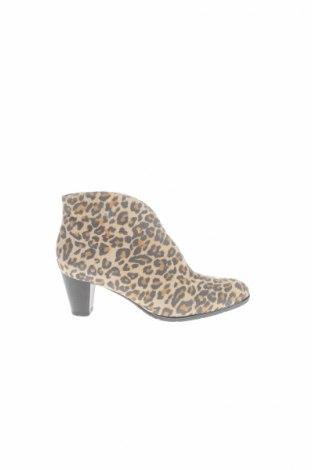 Γυναικεία παπούτσια Ara