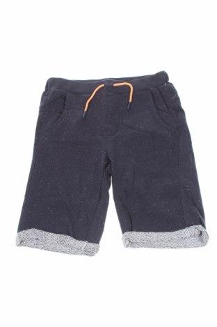 Παιδικό κοντό παντελόνι 3 Pommes