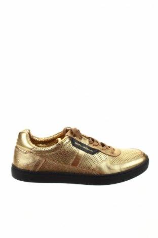 Ανδρικά παπούτσια Dolce & Gabbana